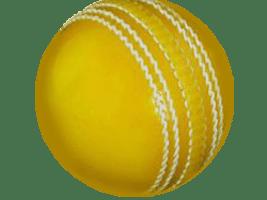 Coloured Cricket Balls