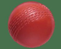 Hard Rubber Cricket Ball