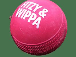 Rubber Cricket Ball