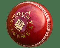 Branded Cricket Balls