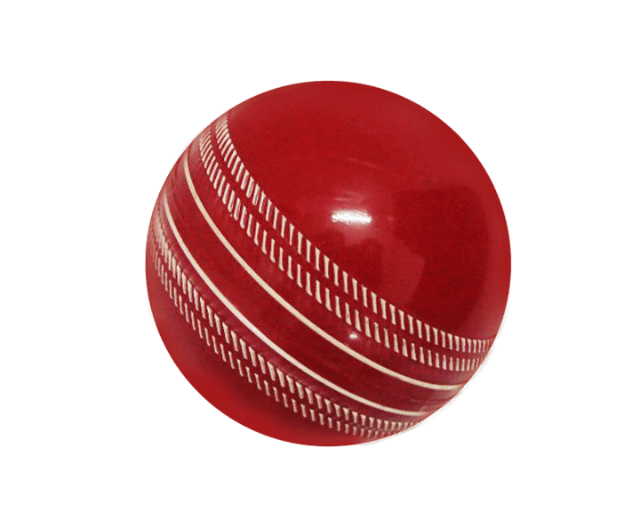 Evershine Youngster's Cricket Ball