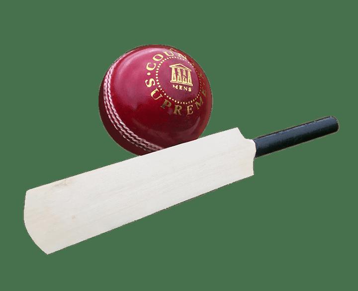 Micro Cricket Bat