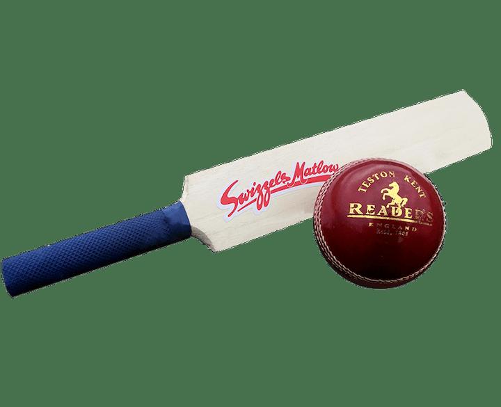 Mini Cricket Bat