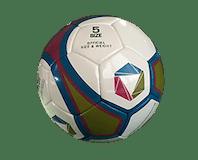 Full Size Standard Football